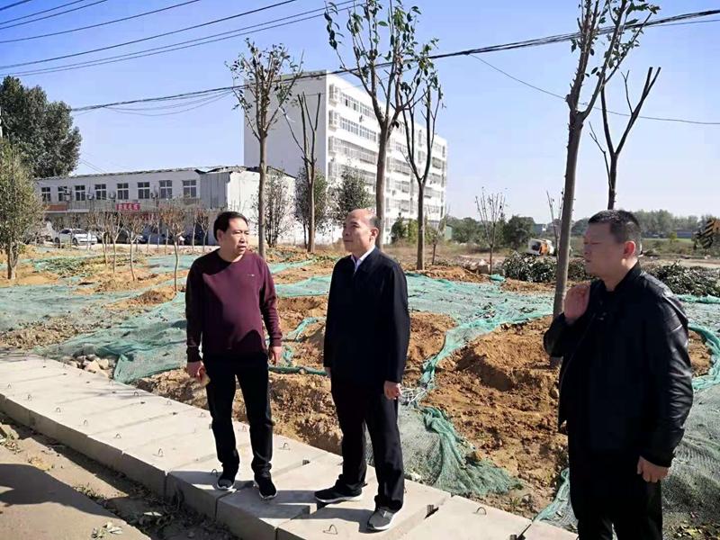 副区长金武军到平桐路和凤凰路实地检查指导绿化、施工情况1.jpg