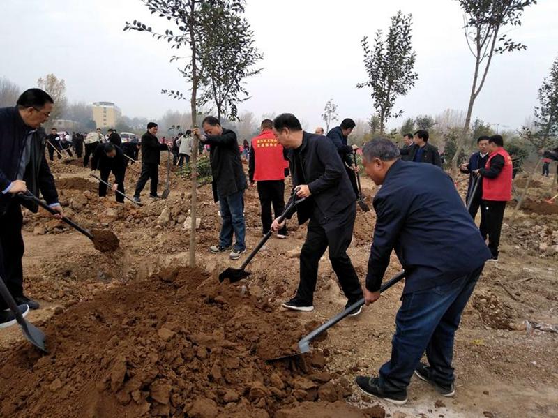湛河区四大班子领导参加冬季义务植树活动4.jpg
