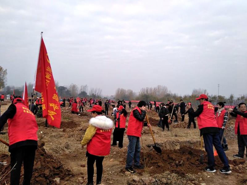 湛河区四大班子领导参加冬季义务植树活动5.jpg