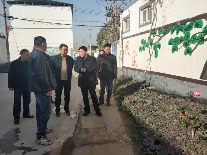 区委常委 常务副区长宁建平带队督导辖区人居环境整治工作3.jpg